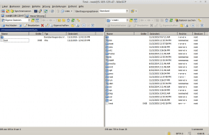 WinSCP9