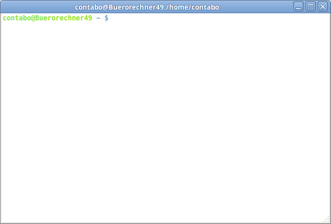 Contabo tutorial: Establishing a connection to your server via SSH